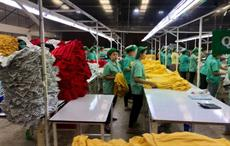 Cambodian garment workers face layoffs due to COVID-19