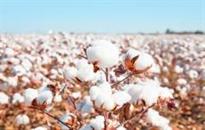 Applied DNA gets patent for cotton fibres tagging