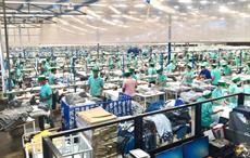 Several Egyptian garment units reduce production by half