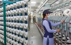 Indian textile firm Trident salutes women power with Trident Asmita