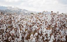 Togo hopes cotton output to rebound after 43% drop in 2020