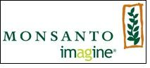 'Bt cotton seeds have created superior value for 6mn farmers' – Monsanto