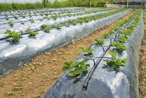 Innovations by Sanitized AG
