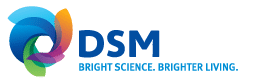 DSM resumes share repurchase to cover existing option plan