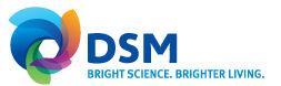 Geraldine Matchett to takeover as DSM's new CFO