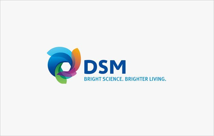 CVC partners DSM's Polymer Intermediates business