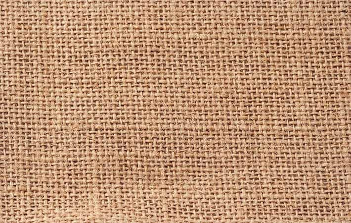 French jute, natural fibre team to visit India, Bangladesh