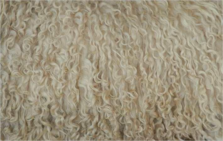 australia wool production to dip 10 8 in 2018 19 fibre2fashion