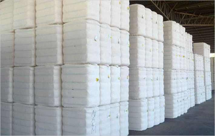 Brazil exports record cotton this season