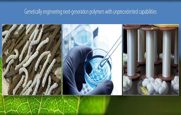 Pic: Kraig Laboratories