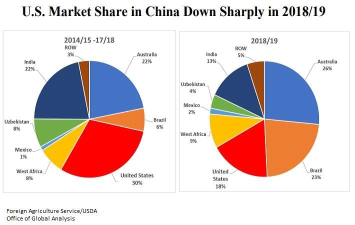 US share in China cotton import dips sharply in 2018-19