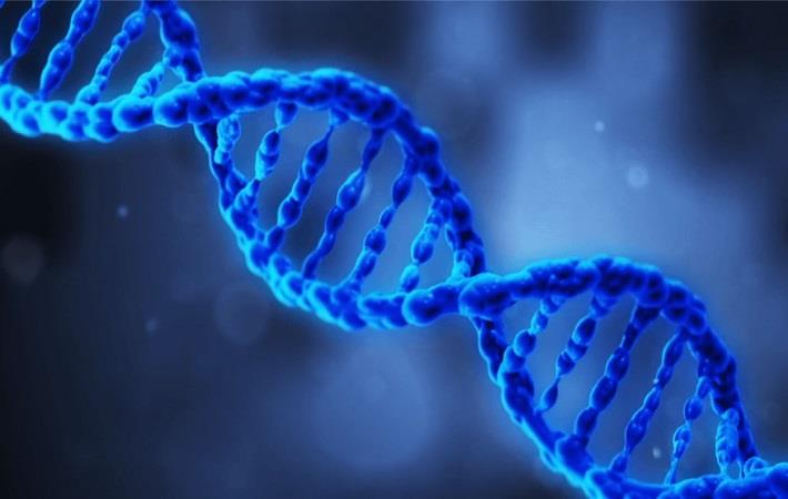 Pic: Applied DNA