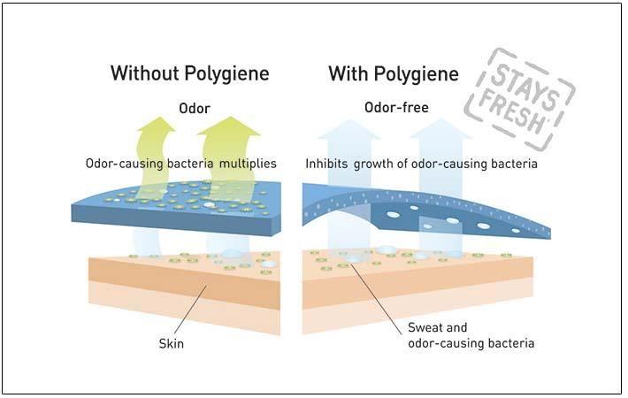 Pic: Polygiene