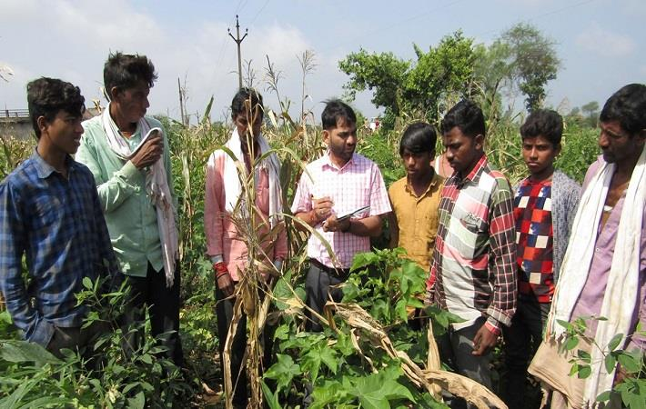 Bestseller secures traceable natural cotton stream