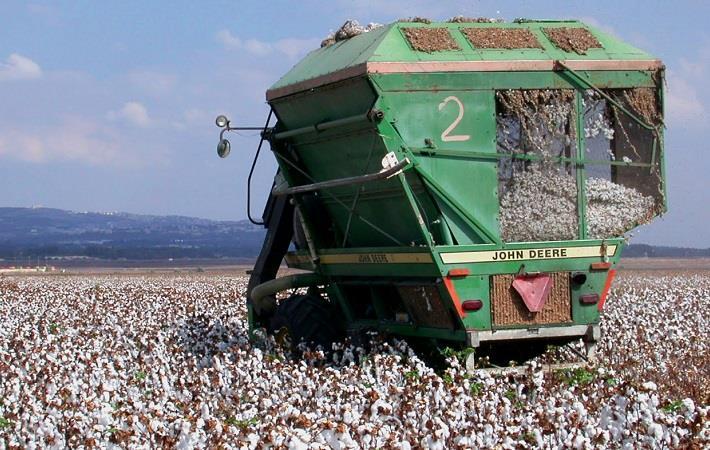 Pic: Better Cotton Initiative
