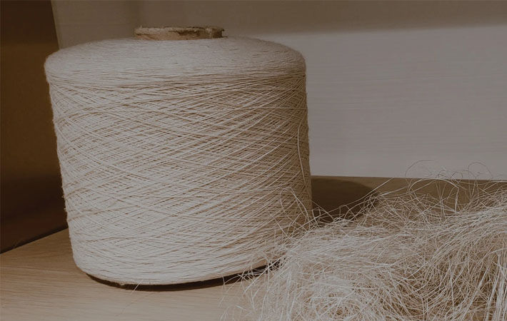 Pic: Bear fiber