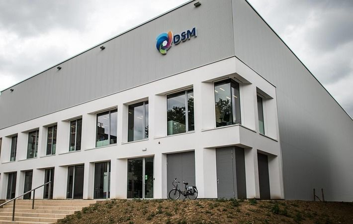 DSM completes sale of Resins & Functional Materials businesses