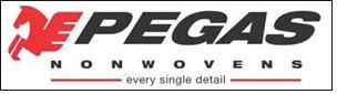 PEGAS NONWOVENS bags 'Excellence Award'