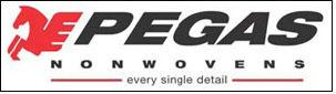 PEGAS NONWOVENS increases revenues to EUR 110.8 mn