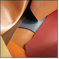 Leather council explores new markets for raw materials