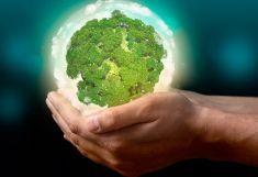 Green Computing For Organizations and Individuals