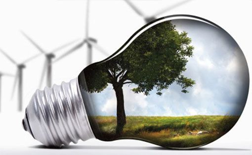 Environmental strategies adopted by companies to achieve sustainability