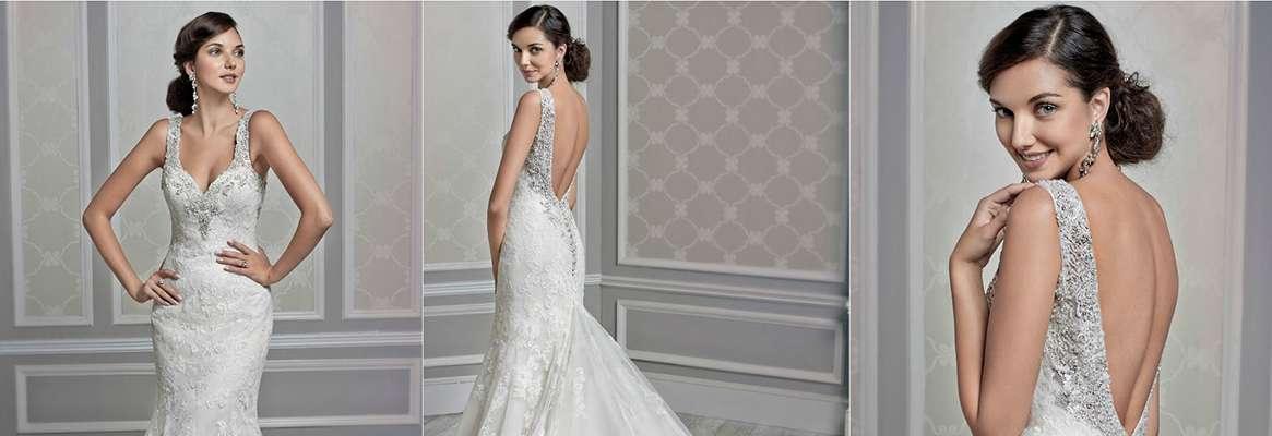 The elegant wedding gown