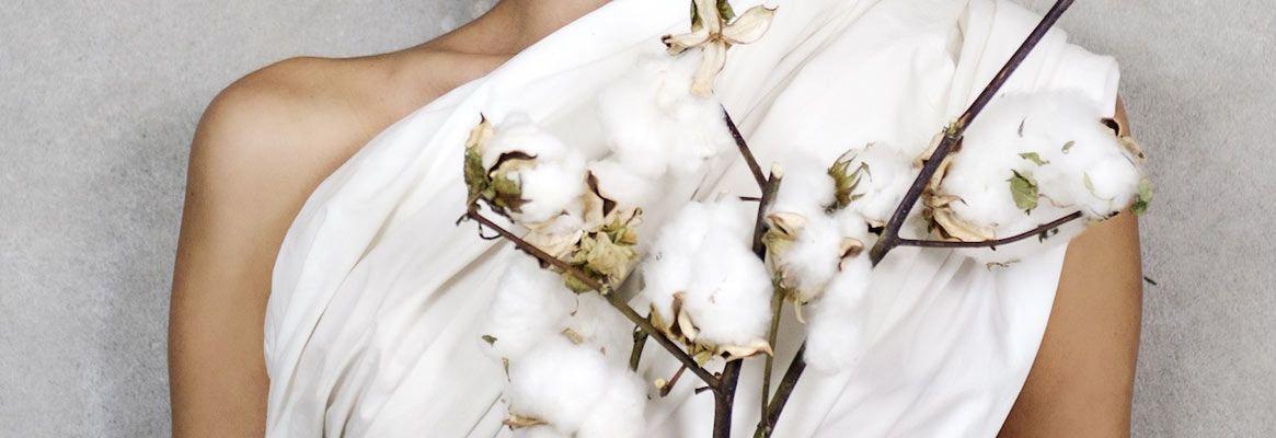 Organic cotton processing, Organic Cotton Production