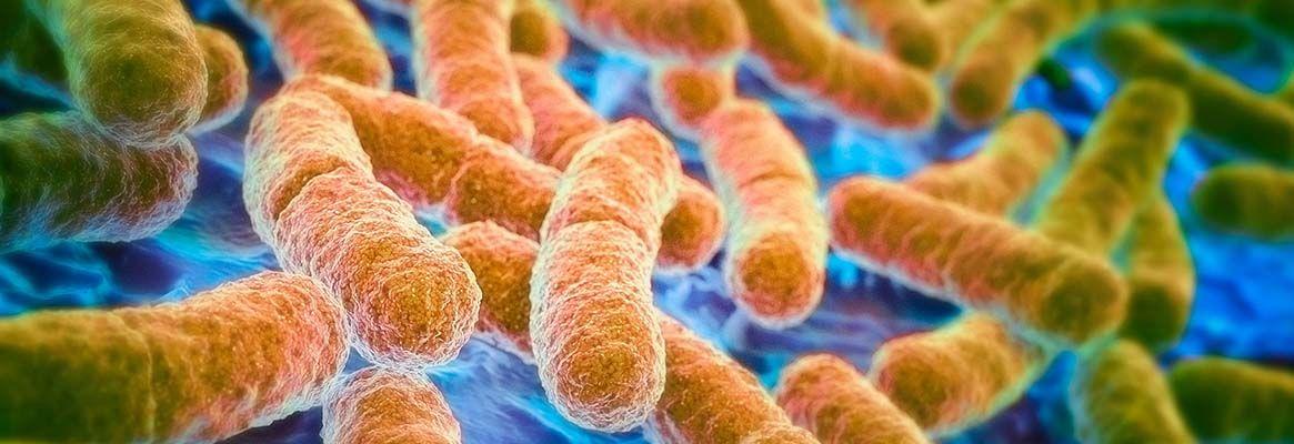 New Era in Anti Microbial Finishing