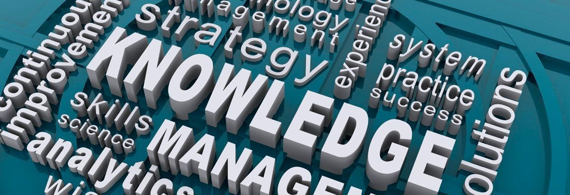 Knowledge Management and SME Growth