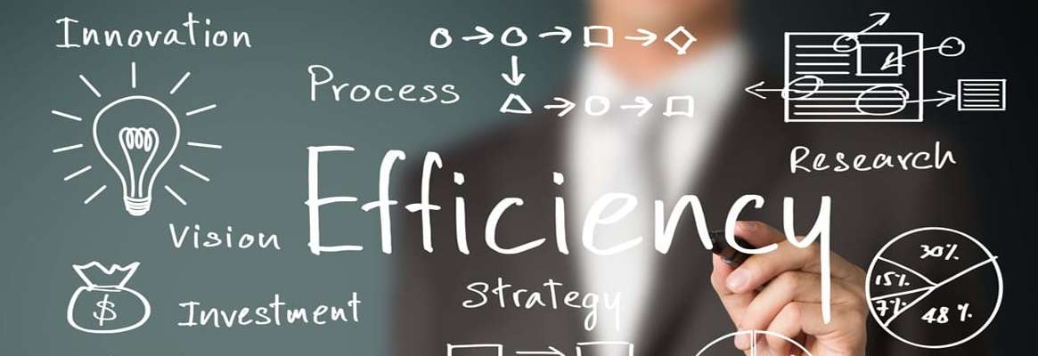 Software as a Service - Managing Risk and Business Efficiency