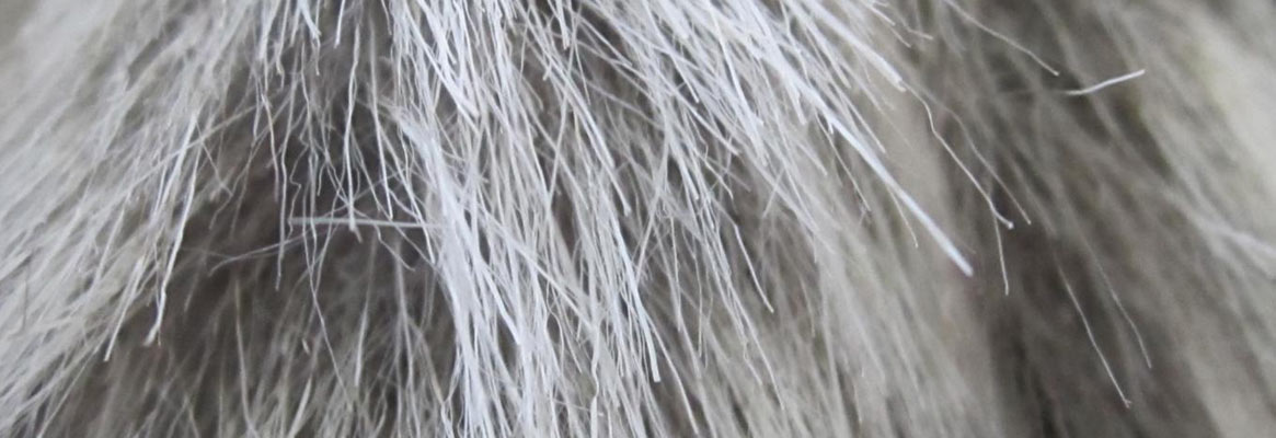 Artificial Fiber by Biomimetics
