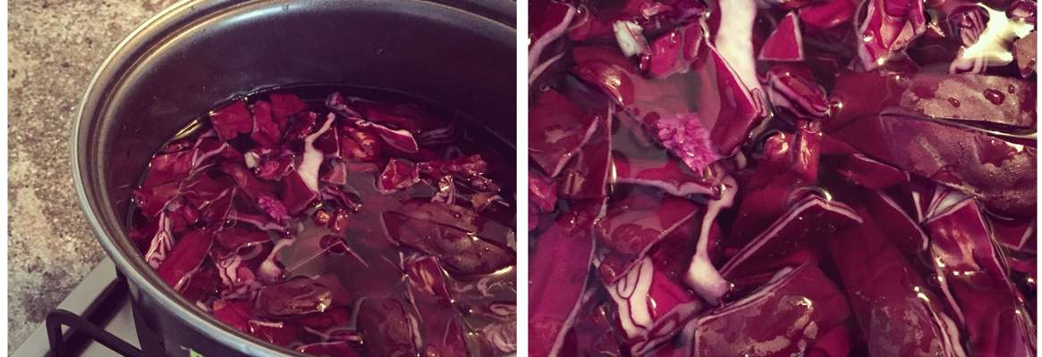Dyeing of Silk with Red Cabbage