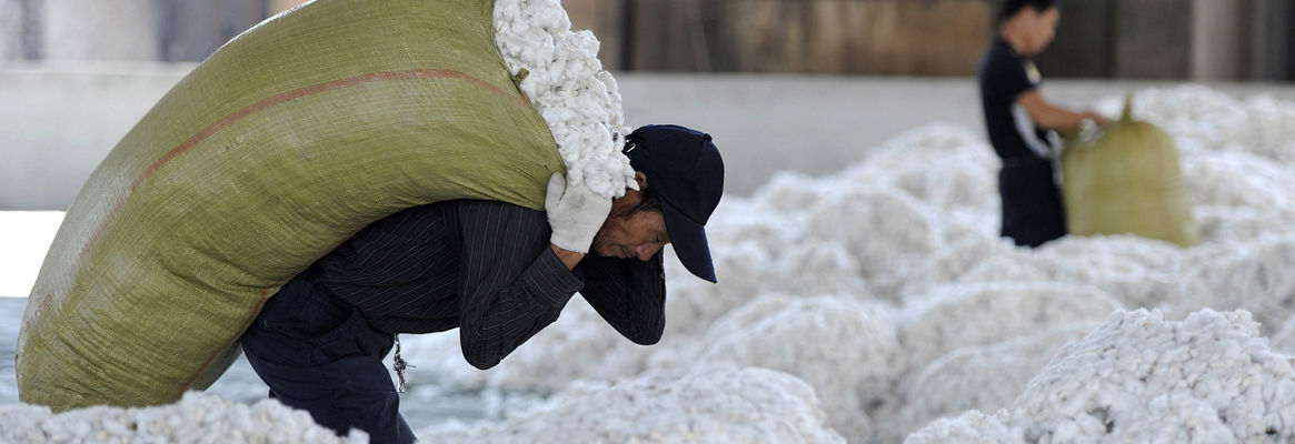 Productivity and Export Performance of Cotton in Indian Textile Industry