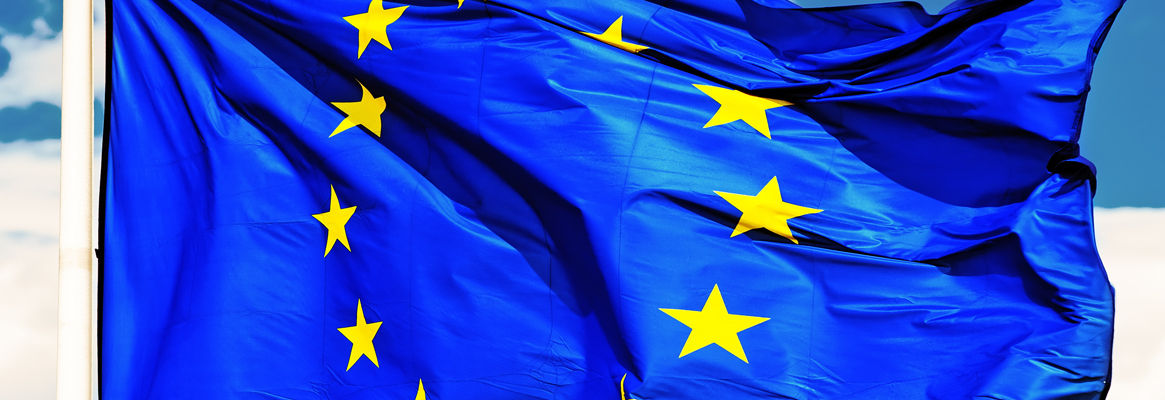 EU's Trade Strategy Shows Concern on Chinese Protectionism