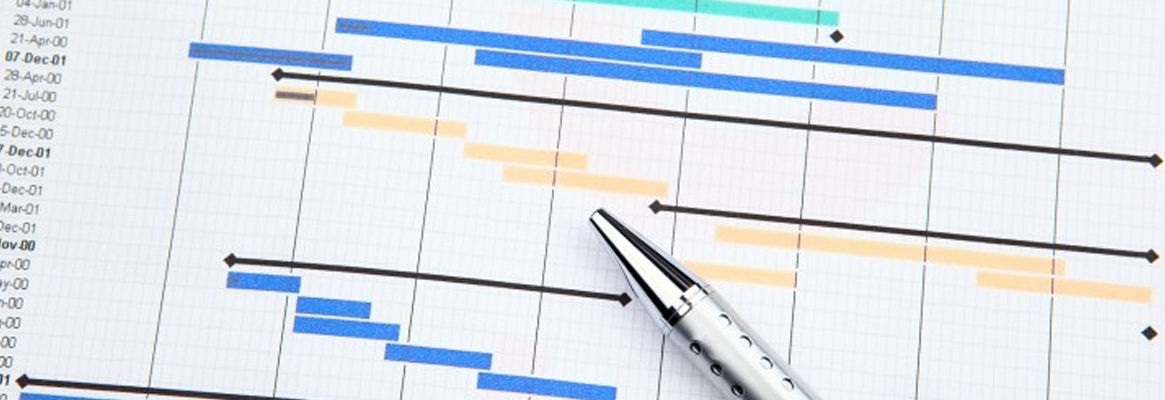 Project Management Methodologies from GANTT Charts to PRINCE2