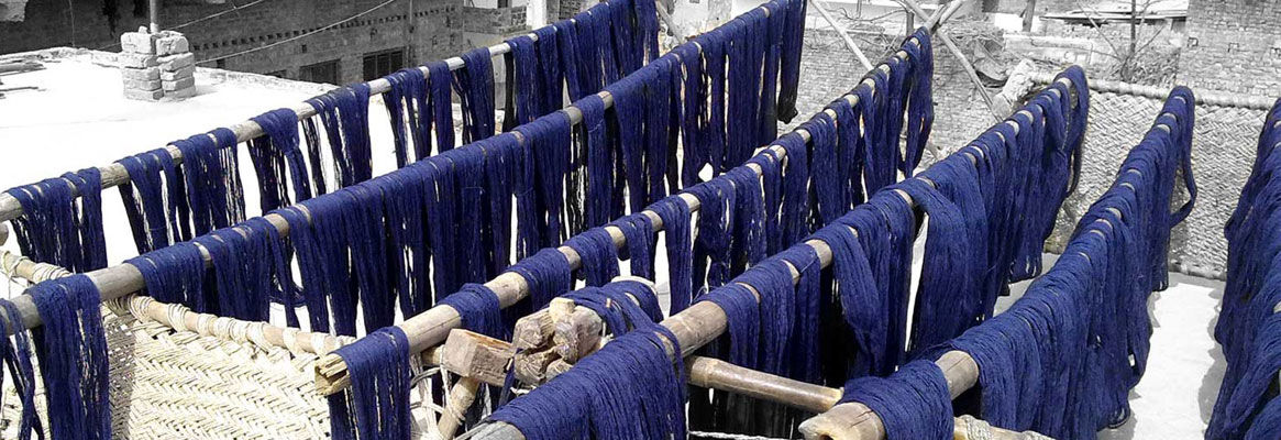 Go Green with Blue Jeans - Handloom Denims