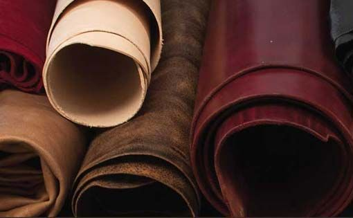 Environmental Problems Caused By Leather Processing Units