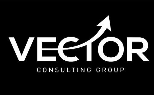 vector consultaing group_small