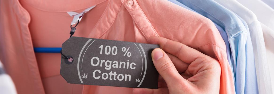 organic-big