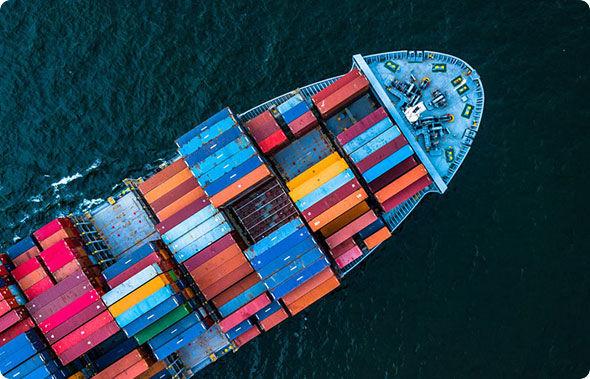 Export- Import Data