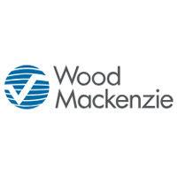 2019 Wood Mackenzie American Nylon Conference